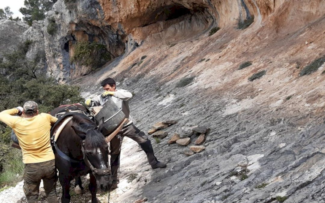 Mejora de la accesibilidad y mantenimiento del entorno de las Pinturas Rupestres de La Sarga. Alcoy